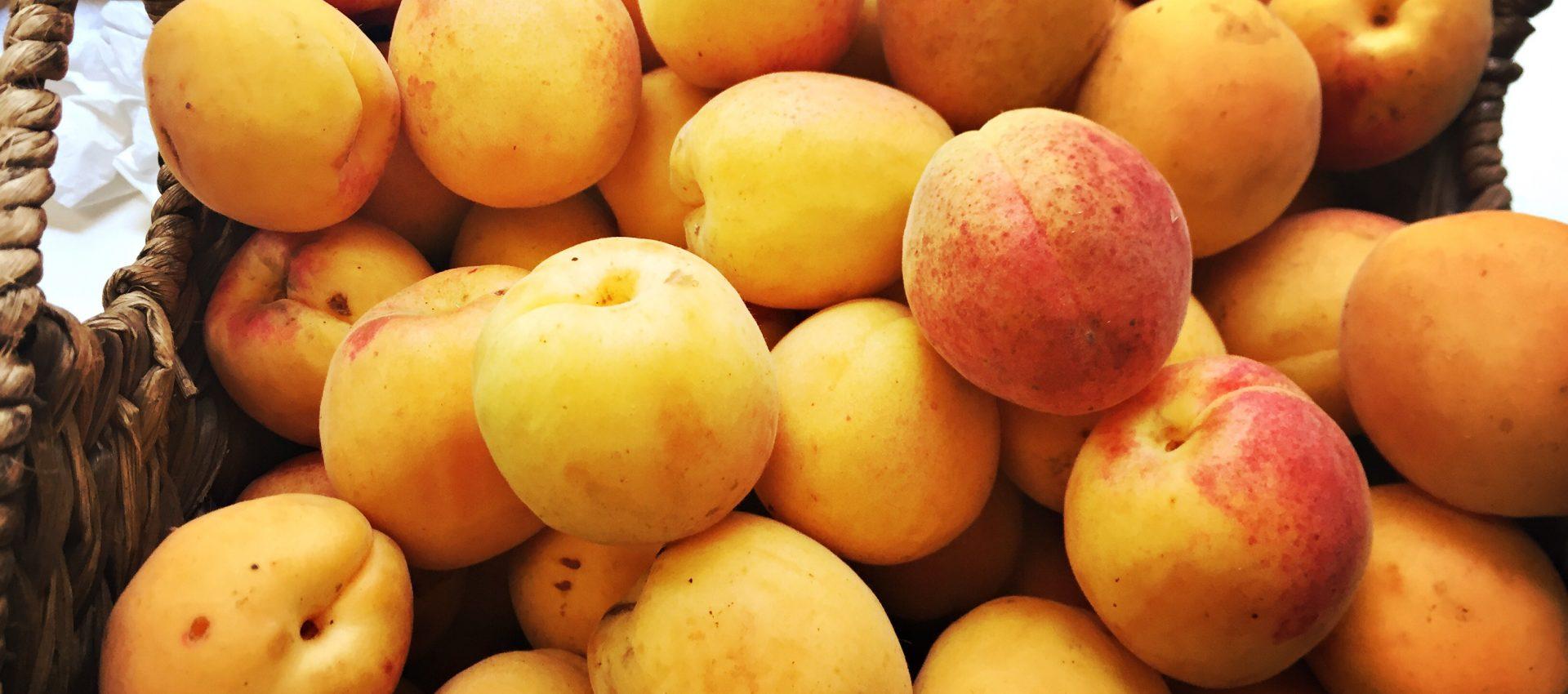 bens-farm-shop-apricot-jam-3