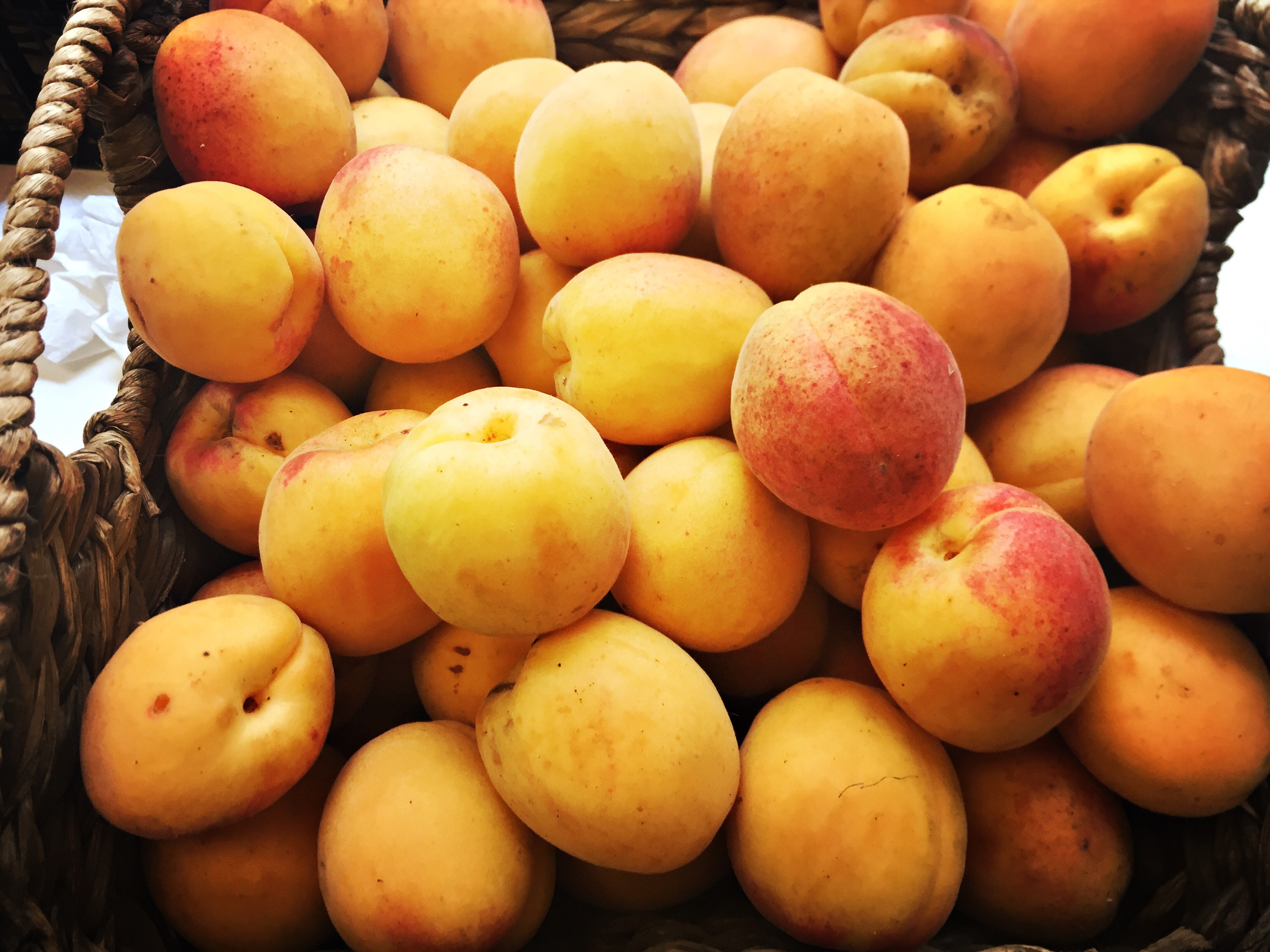 bens-farm-shop-apricot-jam-3