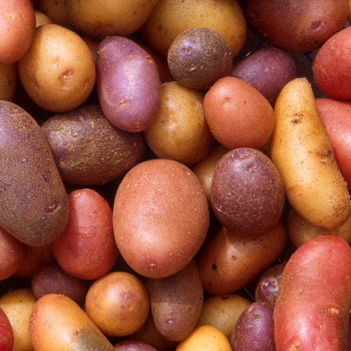 Putting some work into your food, like digging or scrubbing potatoes, will help keep it affordable